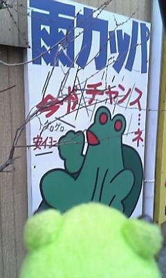 カエル看板