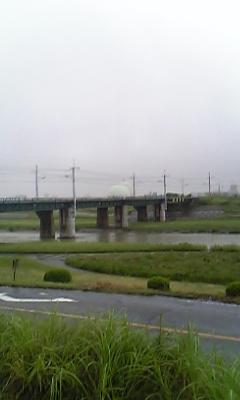 今日の矢田川
