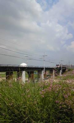 萩と電車と。
